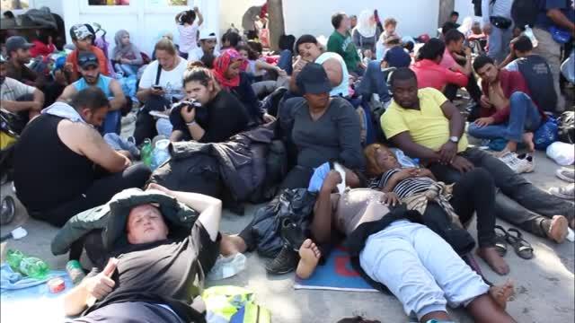 Menekültek a szerb-horvát határnál fekvő Tovarnik mellett