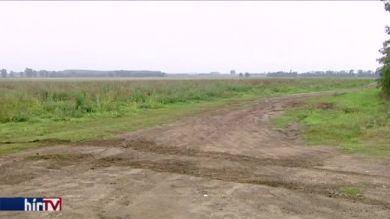Több mint 2500 hektár termőföldre lehet licitálni