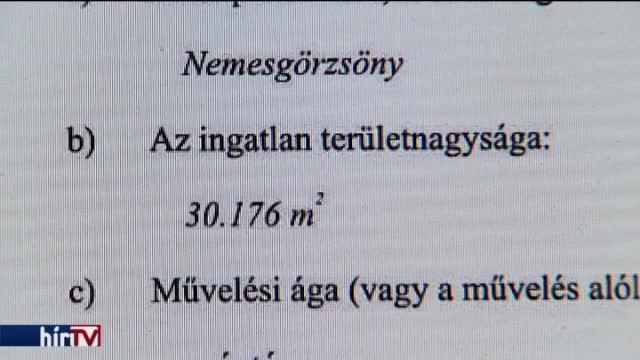 """""""Kártyái"""" kiterítését várják Győrffy Balázstól"""