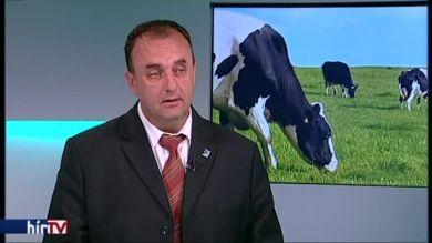 Az UHT tejjel csalják az áfát