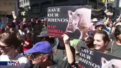 Tüntetés a veszélyeztetett fajok kereskedelmének szigorításáért Dél-Afrikában