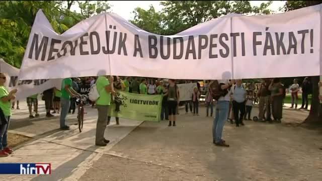 Civil és zöld szervezetek tüntetnek a fakivágások ellen