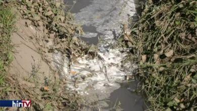 Elönti a szennyvíz a gacsályiakat