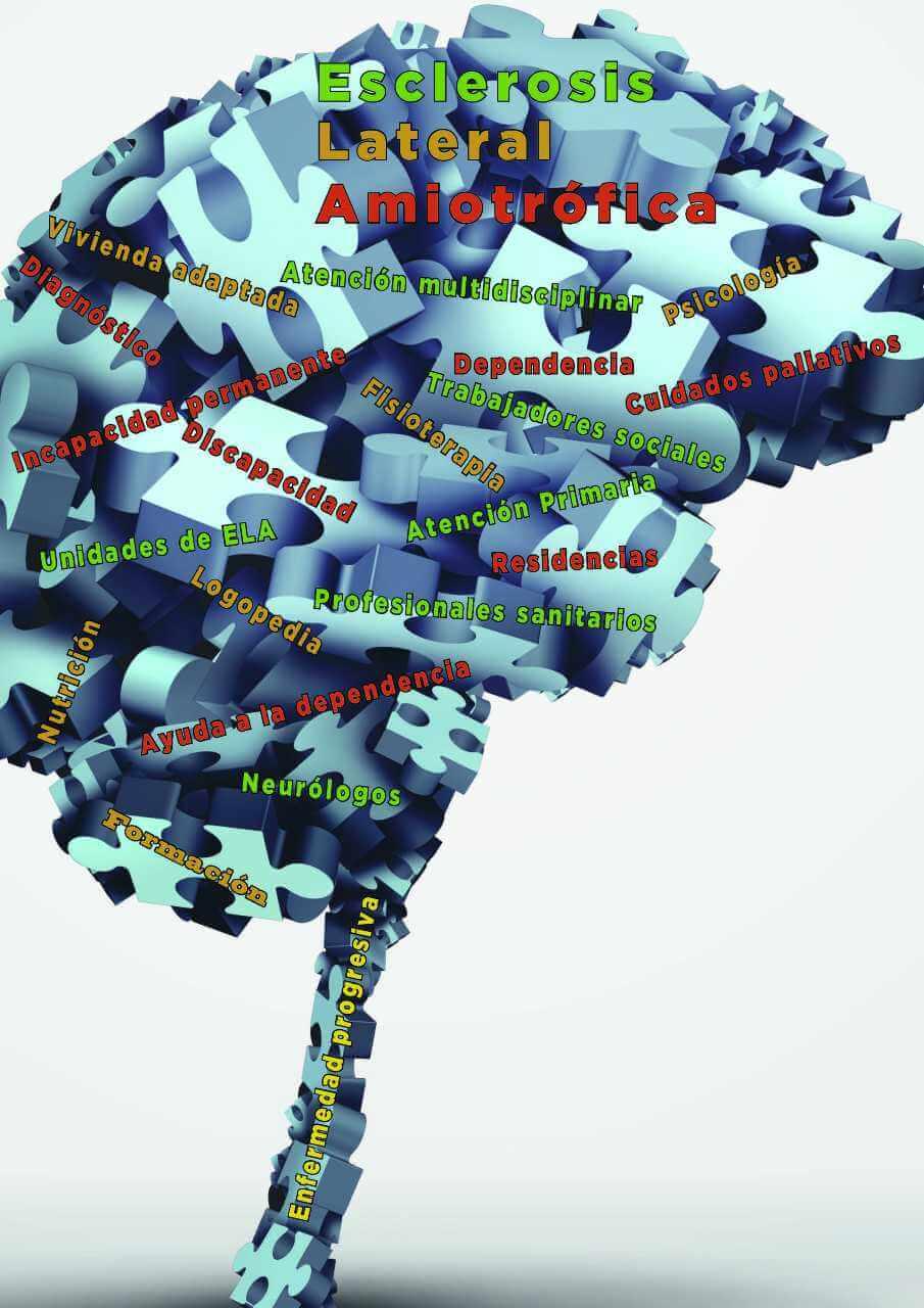 Imagen descriptiva de cabecera de la ONG ADELA