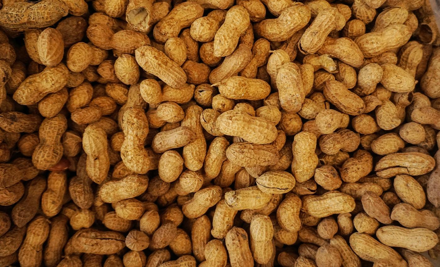 Peanuts are of Indian origin.