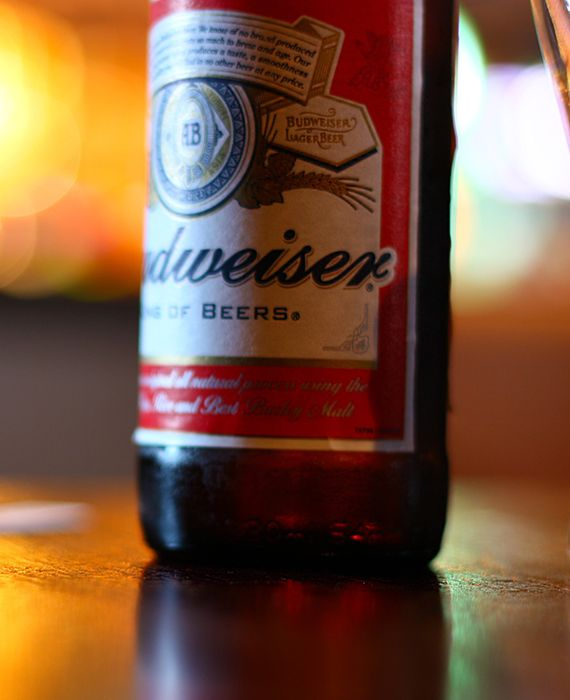 Budweiser employee acknowledges having been urinating into beer tanks.