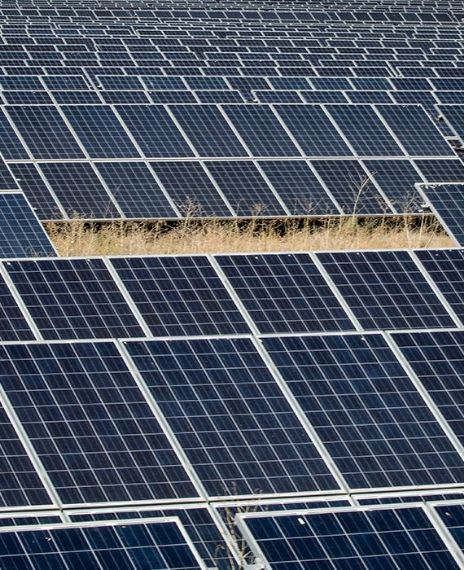 Rewa solar project is Asia's largest solar project.