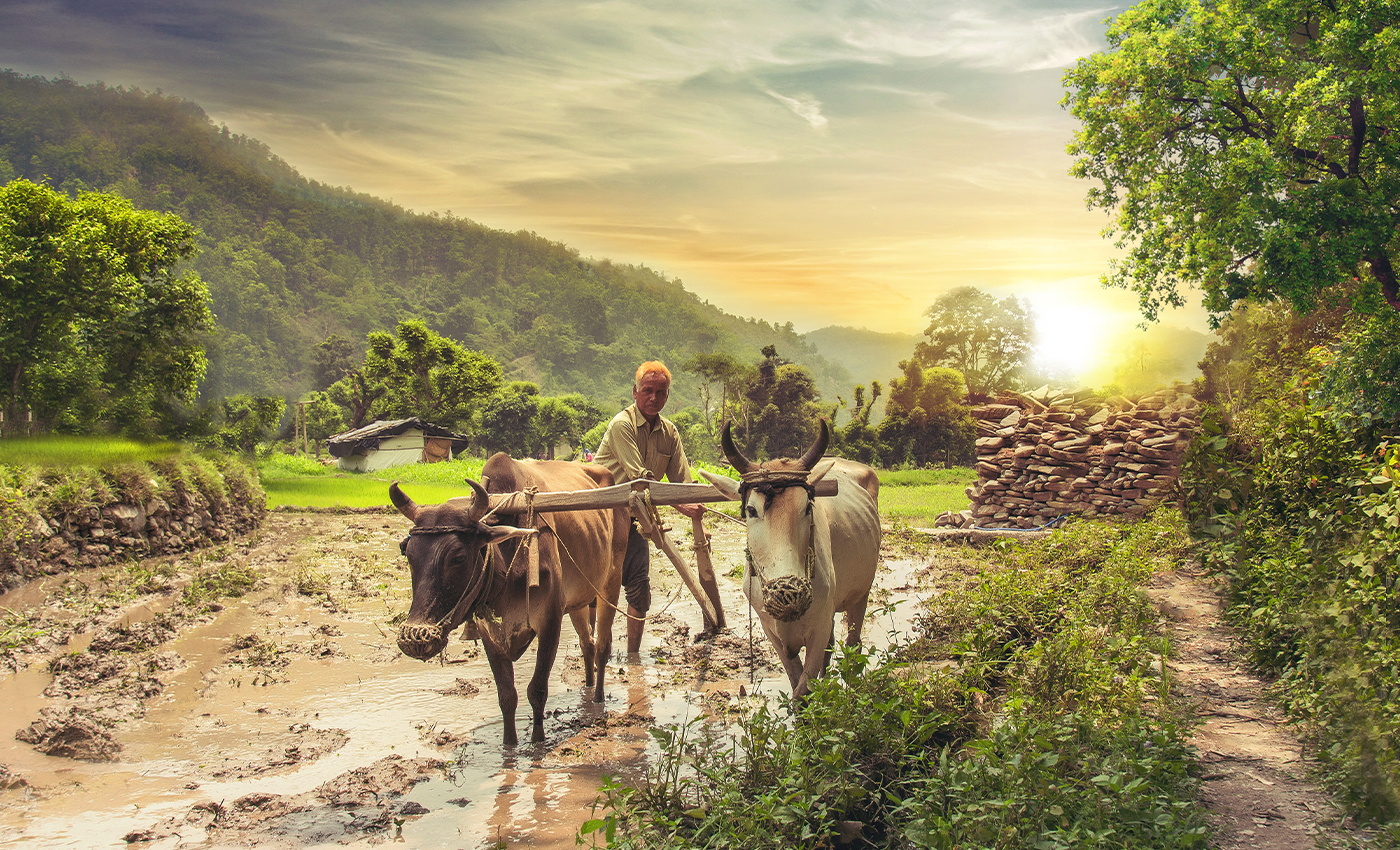 Farmer producing companies in Maharashtra made almost Rs. 10 crore in out-of-mandi trade since new farm laws came into effect.