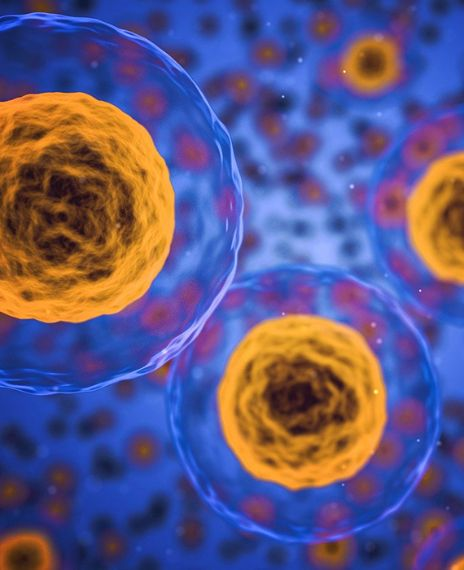 The human body contains nearly 100 trillion cells.