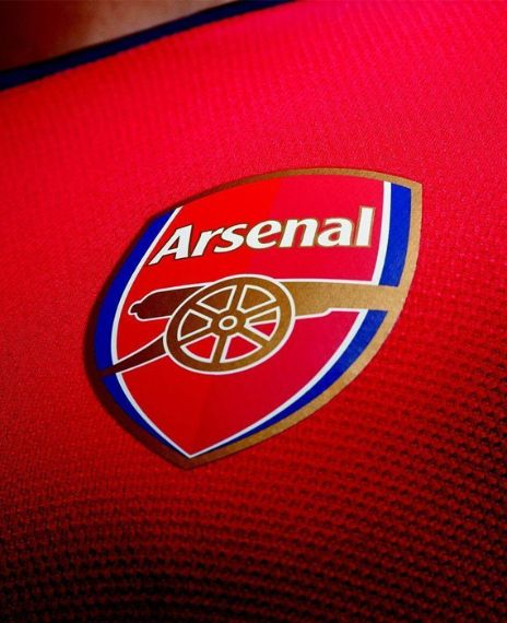 Arsenal is the only premier league team to go without losing a single game in a full season.