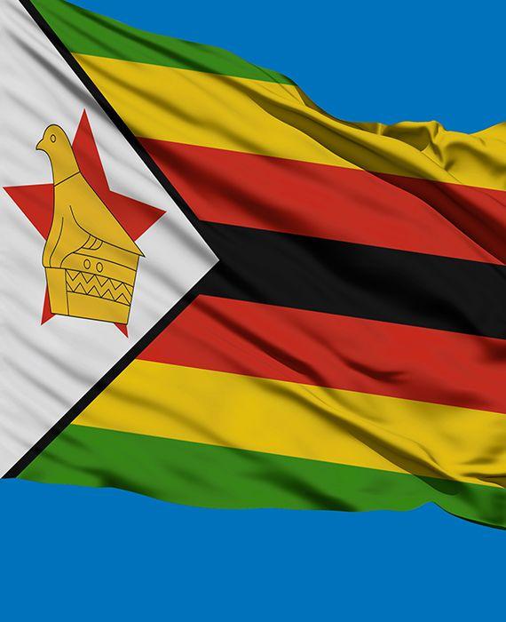 Coronavirus takes cheer out of Zimbabwe independence celebration.