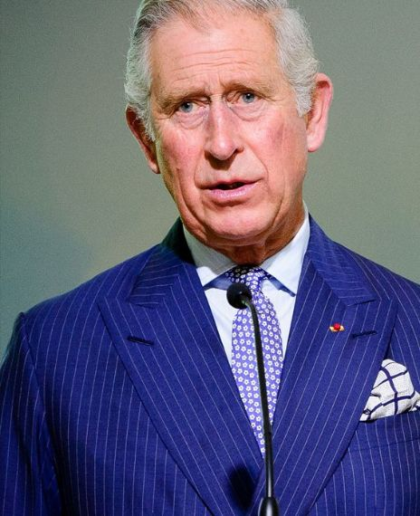 Prince Charles was treated with Ayurvedic medicine to cure COVID-19.