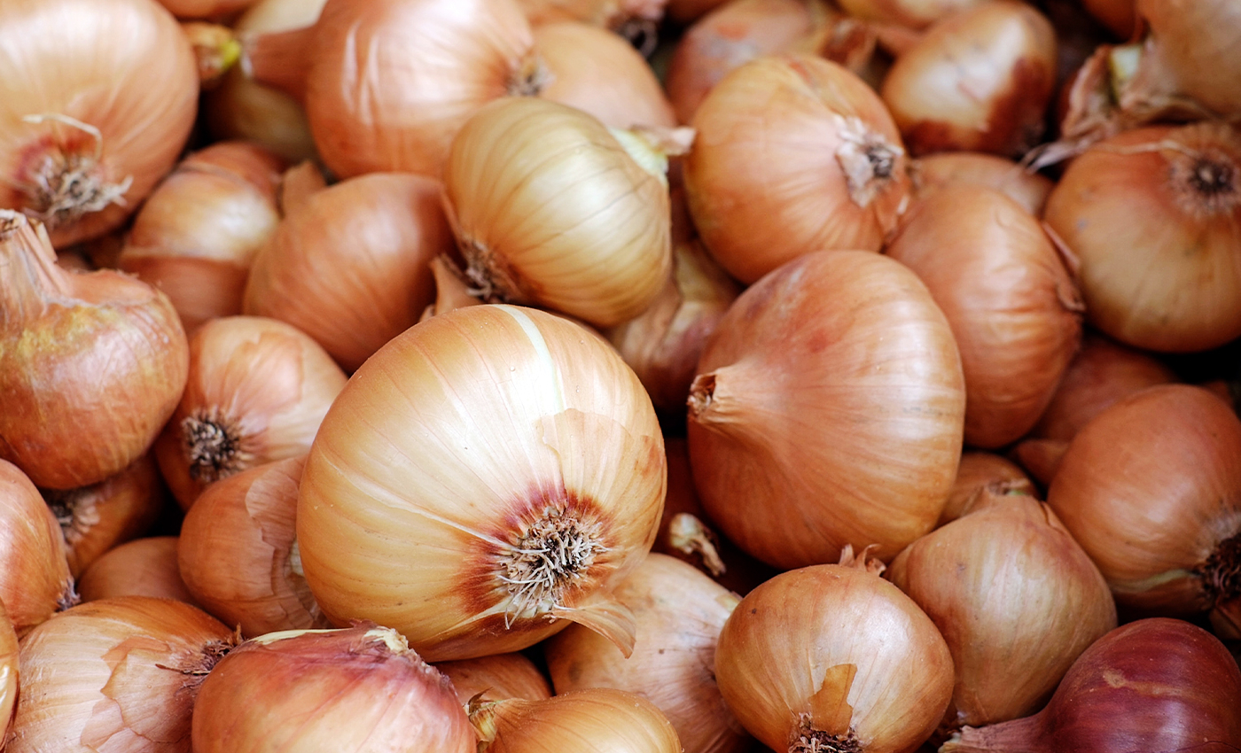 Onion prices double in a month while markets predict further rise.