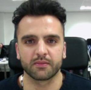 professional online Software Systems Development tutor Saber