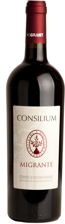 Produktbild på Consilium