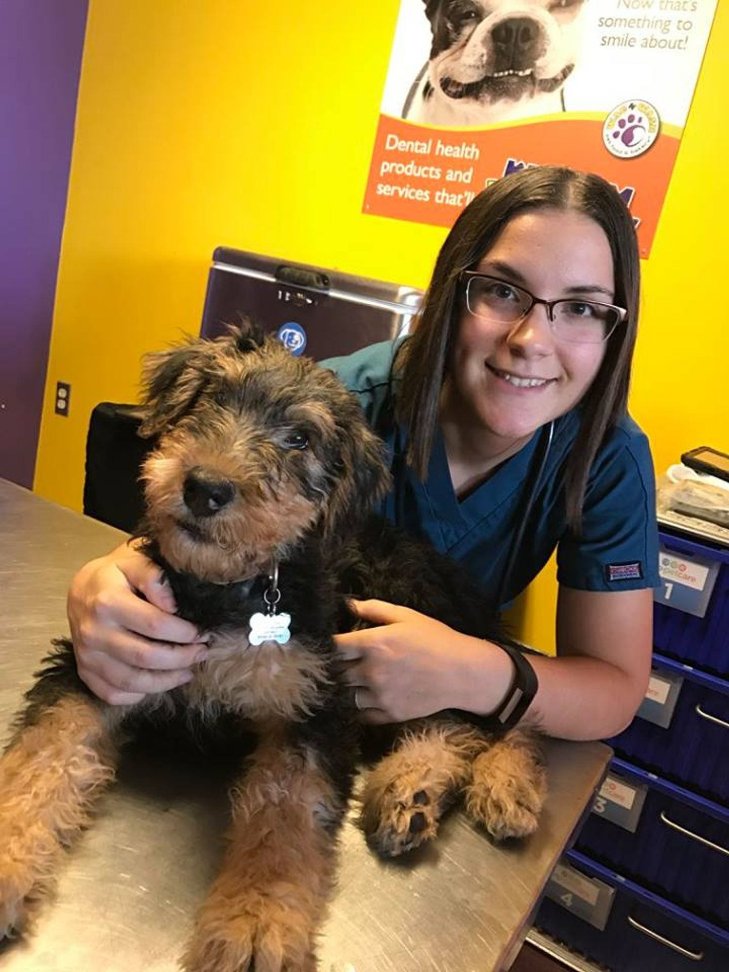 Dr. Heather Venkat at a clinic with an adorable Airedale Terrier puppy